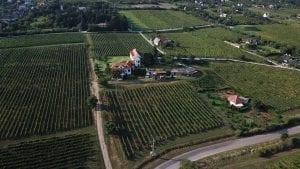 jasdo-kostolom-borbar-winebar
